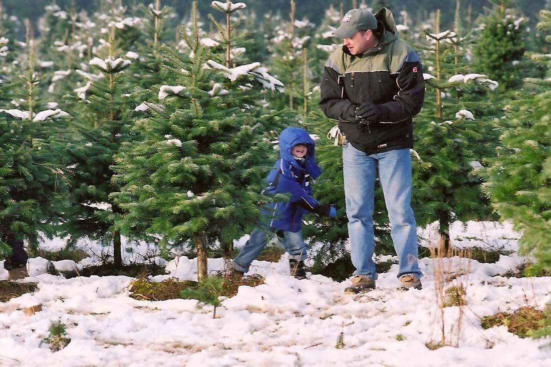 Your Guide To Snoqualmie Valley Christmas Tree Farms Savor Snoqualmie Valley